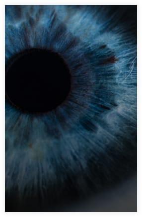 Retinal Research